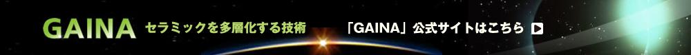 gaina公式ホームページはこちら